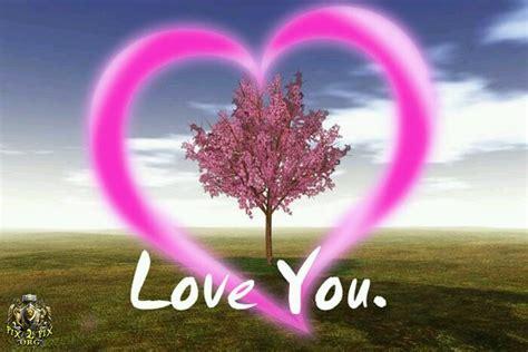 imagenes i love you angel صور ومناظر جميلة mahmood59125376 twitter