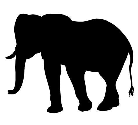 svg design mammal animal safari  svg image icon svg silh