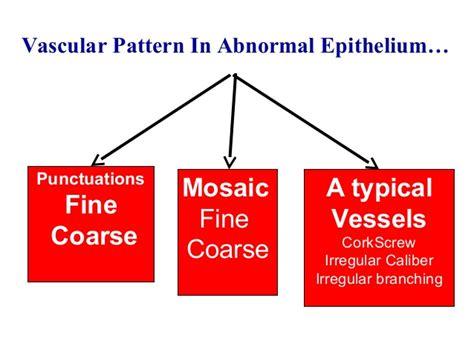 mosaic vascular pattern colposcopy today practical approach dr sharda jain