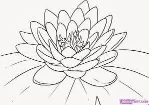 pics photos de flor de lotus ideias para tatuagens desenhos para sala de aula flor de l 243 tus