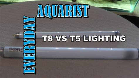 difference between l and light t5 light bulbs for aquariums iron blog