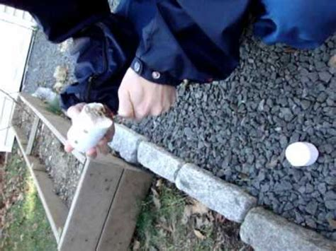 Make Your Own Logs From Shredded Paper - test one shredded paper log starter and