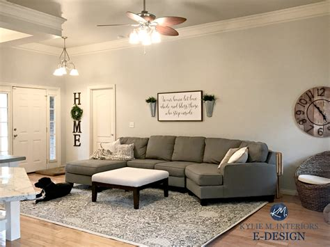 room with couch sherwin williams agreeable gray in living room with gray