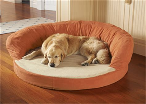 therapeutic dog beds tuffies dog beds waterproof dog beds large dog beds and luxury dog beds dog beds