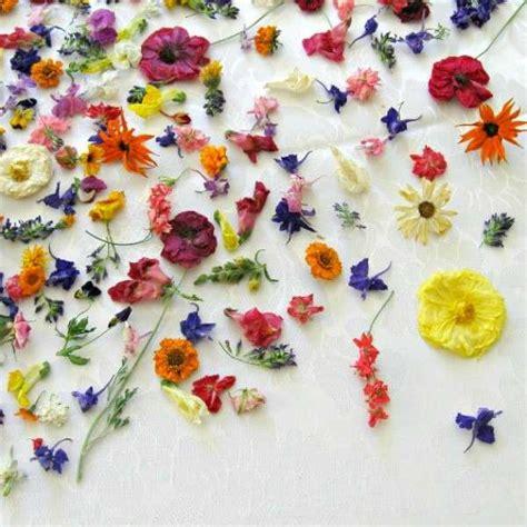 fiori essiccati vendita quadri con fiori secchi fai da te foto mamma pourfemme