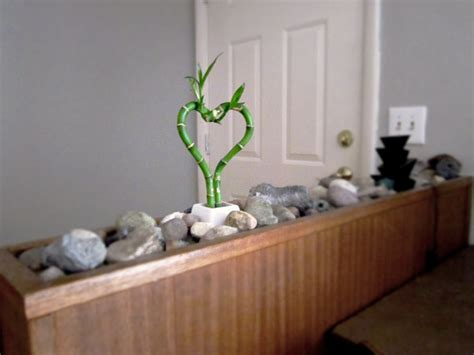 Indoor Rock Garden A Lucky Indoor Rock Garden 183 How To Make A Rock Garden 183 Decorating On Cut Out Keep