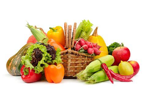 alimentazione per il cervello alimentazione e cervello cicloturismo