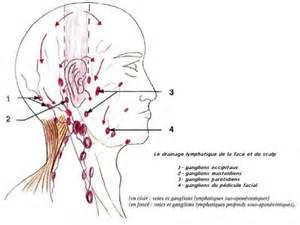 tumeurs du cou