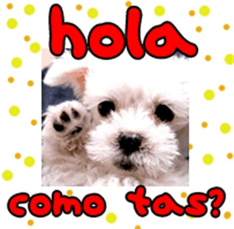 imagenes de hola para un amigo hola como estas las mascotas de los djs de radio isla