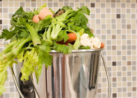 Composting Kitchen Waste At Home by Composting Kitchen Scraps Tips For Composting Kitchen Waste