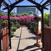 Gardens Of Babylon Nashville by Gardens Of Babylon 45 Photos 27 Reviews Nurseries