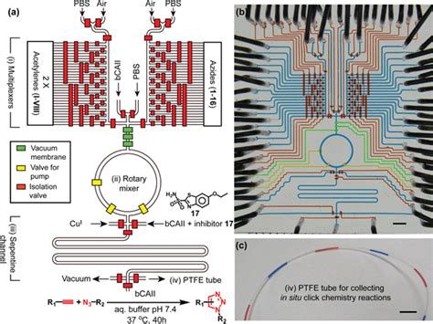 hybrid integrated circuit microfluidic chips 28 images figure 1 microfluidics closes in on