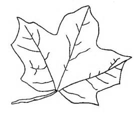 leaves coloring pages coloring now 187 archive 187 leaf coloring pages