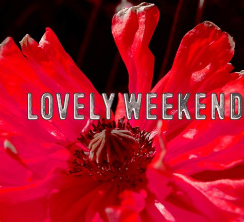 it lovely lovely weekend font dafont