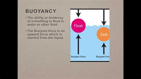What Is Floating And Sinking by Science Buoyancy Floating And Sinking Density