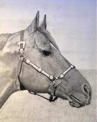 Online Art Contest Horse Heads