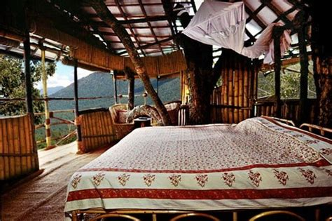 tree house bedroom rafters in the bedroom panda s house