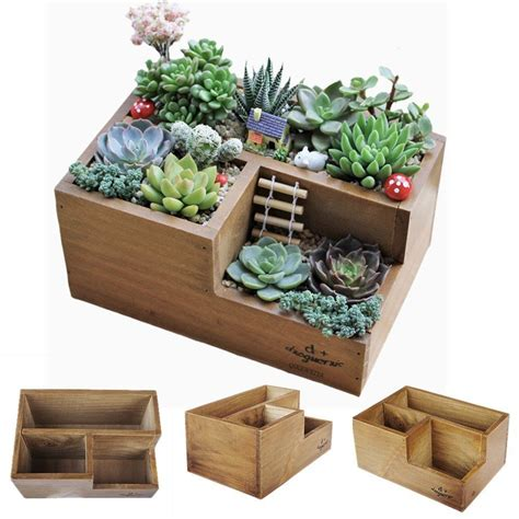 amazon succulents amazon com wooden succulent planter boxes for indoor