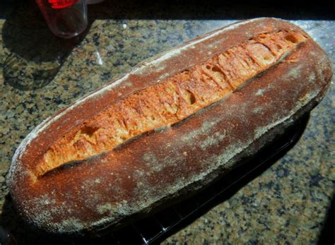 75 hydration sourdough sprouted kamut sourdough 75 whole grain the fresh loaf