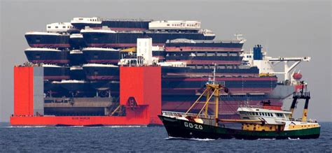 giants boat picture blue marlin the giant ship that ships other ships