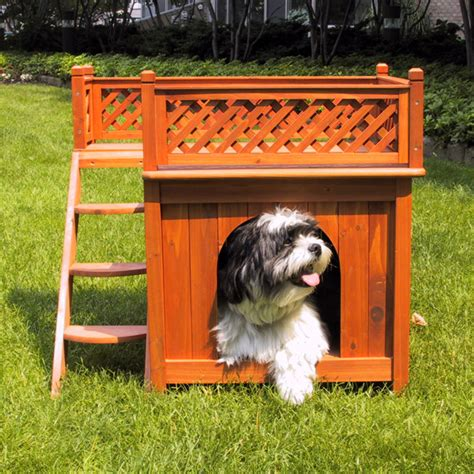 2 room dog house room with a view outdoor dog house baxterboo