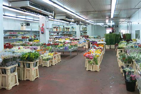 camaras frigorificas para flores c 225 maras de flores camacho