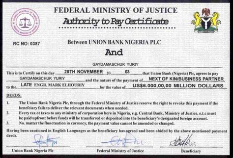section 419 of the nigerian criminal code nigerian pleads innocent to bank fraud in the us nigeria