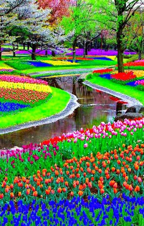 Flower Garden Amsterdam The World S Catalog Of Ideas