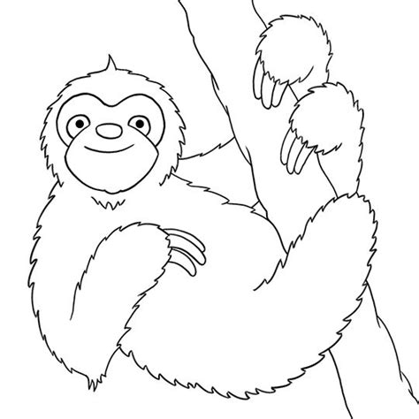 sloth animal coloring pages 187 coloring pages 62 best images about otters meerkat sloth ferret on