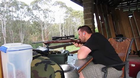 how to put mange tikka right on short haircut sighting in the tikka 223 short barrel for foxing with