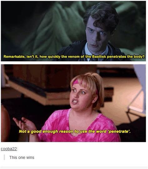 Pitch Perfect Meme - harry potter pitch perfect meme funny stuff pinterest