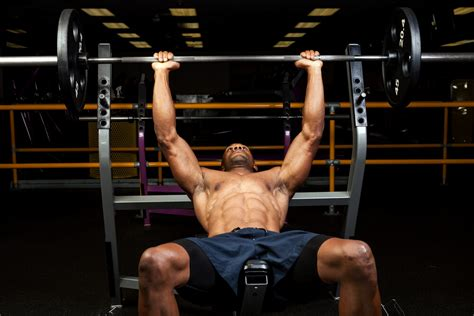 bench press lower back pain the all iron workout for strength gains gym junkies