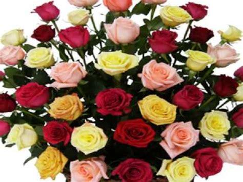 imagenes de flores para un amigo rosas para mis amigas youtube