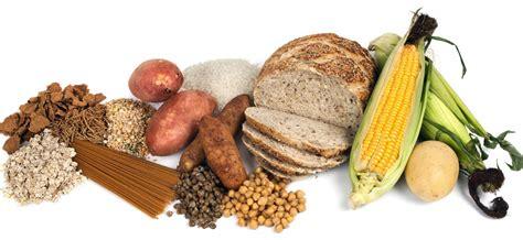 alimentos  hidratos de carbono buenos  malos ejercicios en casa