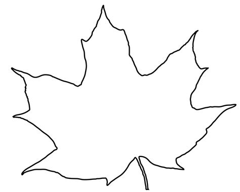Outline Of A Leaflet by Leaves Outline Images