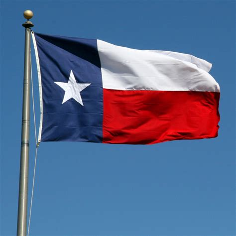 Tx Search Flag Images Search