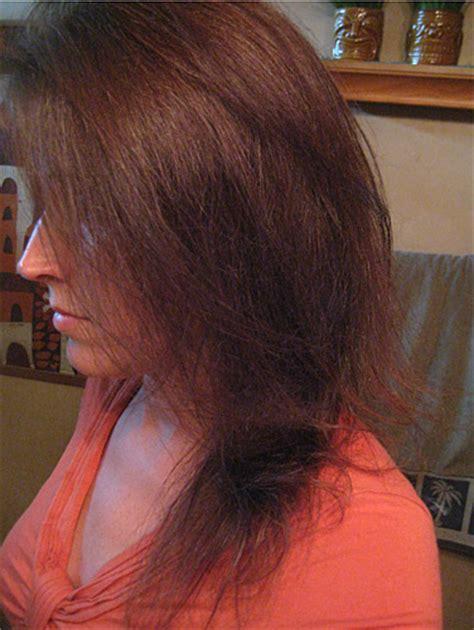 best wen product for fine hair the best wen hair shoo for thin hair jill reviews it wen