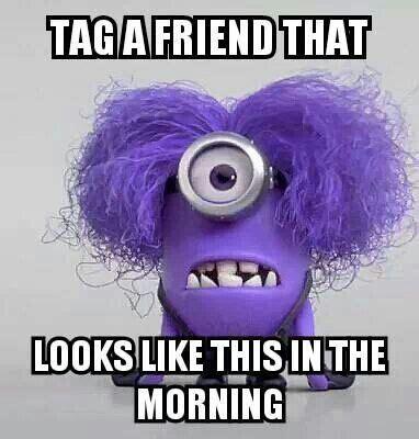 purple hair happy or crappy randomness it s best 35 evil minions memes humor funny minions memes