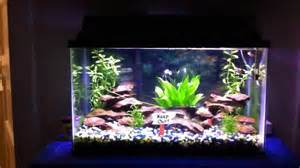 Baby Photo Props Beautiful Guppy Aquarium Youtube