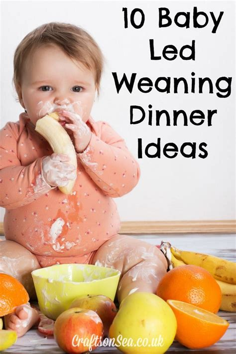 1000 images about baby led weaning on finger foods food and meals 10 baby led weaning dinner ideas your whole family will love baby led weaning led weaning and