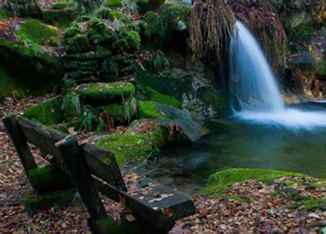 monte aloya park monte aloia nature park spain natural well monte sano