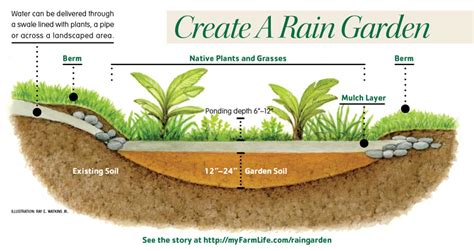 How To Create A Flower Garden How To Create A Garden Myfarmlife