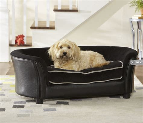 dreamcatcher dog sofa bed sofa for dogs enchanted home pet library sofa dog bed