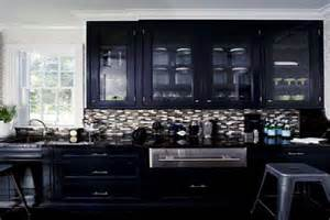 Black Cabinet Kitchen Ideas Cabinets Amp Shelving Chic Black Kitchen Cabinets Pain It