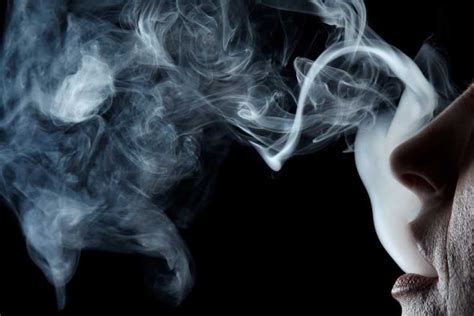 I Breathe You In With Smoke In The Backyard Lights by Breathing Yourself To Bliss Fitness Health And Wellness