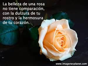 imagenes de rosas rojas con frases de buenos dias fotos de flores con frases de amor fotos de flores