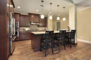 kitchens dark cabinets pictures of kitchens traditional dark wood kitchens