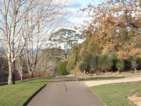 Mt Tomah Botanical Gardens The Jungle Lodge Mount Tomah Botanic Garden Sydney