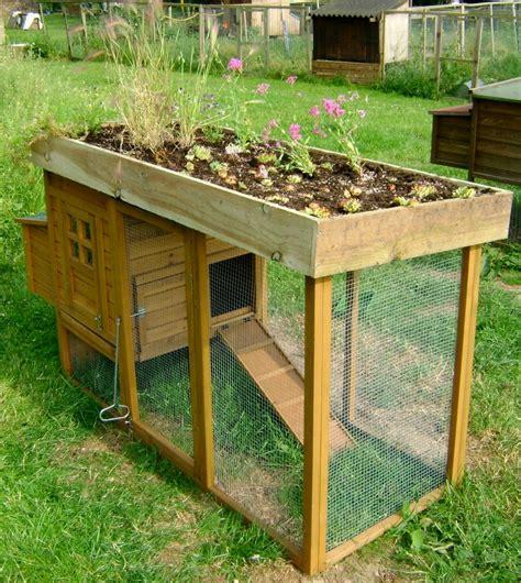 Chicken Coop With Planter by Diy Chicken Coop Green Roof Petdiys
