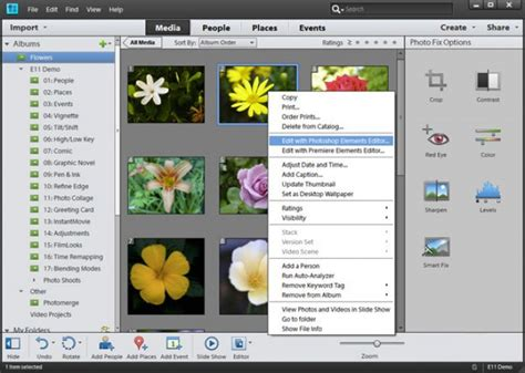 adobe photoshop elements 11 full version download adobe photoshop elements iso download in one click